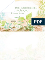 CARTILHA_Sintemas Agroflorestais por Nucleação.pdf