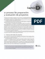 03 - El Proceso de Preparacion y Evaluacion de Proyectos