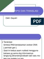 transkripsi-dan-translasi.ppt