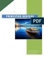 icip-principios-basicos.pdf