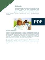 Historia de Danper Trujillo Sac