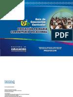 GUIA DE CONCRECIÓN CURR. PRIMARIA.pdf