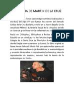 Biografia de Martin de La Cruz