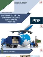 EXP Logistica