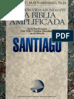 2014-04-00AdicionalPMRib2.pdf
