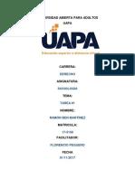 Primera Actividad UAPA