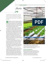 Hidroponia Agricultura Del Futuro