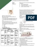 Evaluacion Sistemas Digestivos y Digestion2014