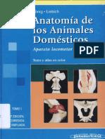 163378692-Anatomia-de-los-animales-Domesticos-Tomo-1-Konig-pdf.pdf