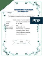 314621160-Informe-de-suelos-franco-limoso.docx
