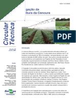 Irrigação Da Cultura Da Cenoura