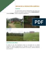 Factores Ambientales en La Producción Agrícola