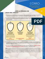 Como1-Medir-prdida-agua-huevo-ES-2013.pdf
