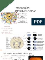 Patologías Neuroftalmológicas Final
