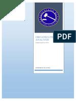 Organizational Analysis_Sangguniang Bayan