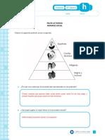 Pauta Piramide Social Colonia