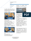 Caso Fabrica de Arequipa Exportacion Tramites y FOB Oxford Group Giovanni Alfonso Huanqui Canto