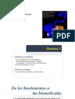 biomoleculas 201720x