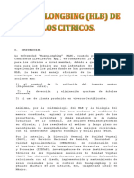 Investigacion Protocolo