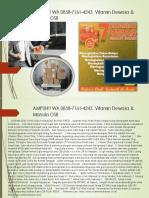 AMPUH!! WA 0858-7161-4243, Vitamin Dewasa & Manula OSB