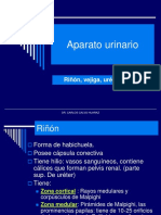 1.-Urinario-Medicina.pdf