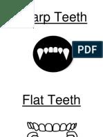 flashcards teeth