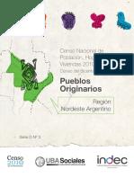 pueblos_originarios_NEA.pdf