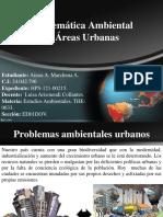4 problematica ambiental VENEZUELA.ppt