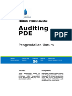 Modul EDP Audit [TM6].doc