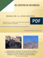 Informe Nº 004 Gestion de Seguridad 2014 Perla Del Norte Sem3 Junio