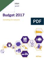 Grant Thornton Budget Summary 2017