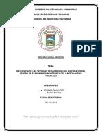 ENSAYO CAMAL MONTERREY_QUERO 1.docx