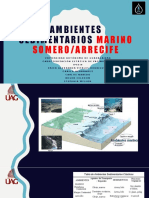 Ambientes Sedimentarios Marino Somero