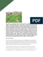 Agricultura Europea