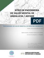 Programa v Encuentro de Enfermeria de Sm Andalucia Aeesme