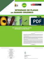 banano_integrado.pdf