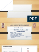 SEMINARIO-PA-COMP.pptx