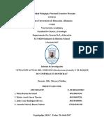 Investigación sobre Gorgojo descortezador del pino en Honduras