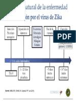 Historia Natural Del Zika
