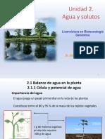 2.1.1 Célula y Potencial de Agua