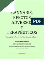 Melendez Cruz Andrea.pdf