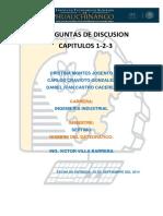 245308452-Preguntas-de-Discusion.docx