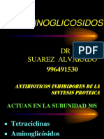 9. Aminoglicosidos Unjfsc 2014