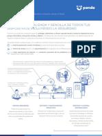 PCF ES DataSheet