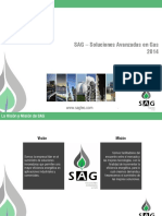 SAG - Perfil 2014 Rev.4cc