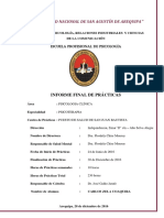 Psicoterapia Informe Final