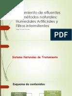Tratamiento de Efluente Por Métodos Naturales