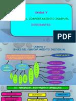 Bases del comportamiento.pptx