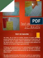Test Raven