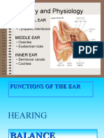 Audio Visual Disturbances
